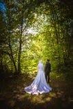 Matrimonio algerino e canadese Immagini Stock