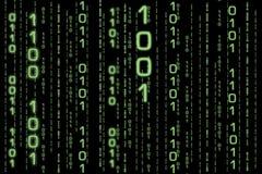 matris för binary ii royaltyfri illustrationer