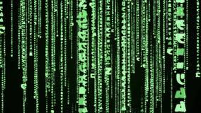 Matrix green code rain looping animation stock video footage
