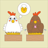 Matrizes da galinha Foto de Stock