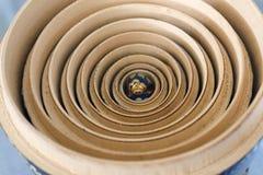Matrushka - onde está todos? (2694) Fotos de Stock