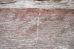 matrycuje drewnianego Fotografia Stock
