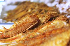 Matskaldjur ser den också stekte fiskkötträtten Arkivbild