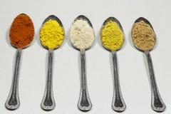 Matskedar av olika typer av kryddapulver- och matfärgläggning royaltyfri fotografi