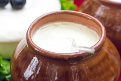 Matsoni o Matzoon Yogurt georgiano, alimento sano fotografie stock libere da diritti