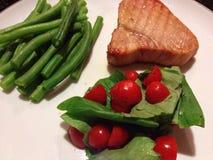 Matställe med tonfiskfileten och grönsaker Royaltyfria Foton