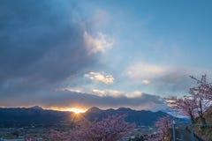 Matsuda Sakura Festival Photo stock