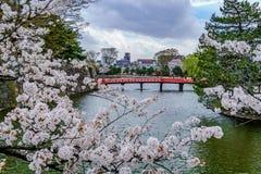 Matsumoto Castle during cherry blossom season royalty free stock photography
