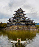 Matsumoto castle in autumn with two swans Stock Photo