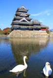 Matsumoto Castle in Japan with Swans Royalty Free Stock Photos