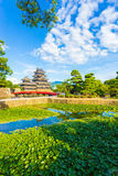 Matsumoto Castle Lily Pad Pond Foreground V Stock Photos