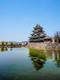Matsumoto castle with sakura blossom , Matsumoto, Japan 10 Royalty Free Stock Image