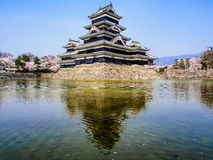 Matsumoto castle with sakura blossom , Matsumoto, Japan 1 Stock Image