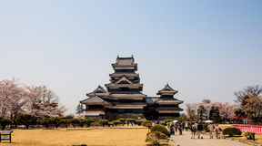 Matsumoto castle in sunny day, Matsumoto, Japan Royalty Free Stock Photos
