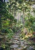 Matsumoto-Durchlauf in Kumano, Japan Lizenzfreie Stockfotografie