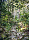 Matsumoto Pass in Kumano, Japan Royalty Free Stock Photography
