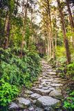 Matsumoto Pass in Kumano, Japan Royalty Free Stock Image