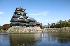 Matsumoto slott i Japan med svanar Royaltyfri Fotografi