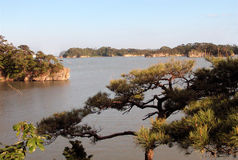 Matsushima. View from Matsushima-one of the three best views of Japan Stock Photos