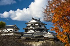 Matsuyama Castle Royalty Free Stock Images