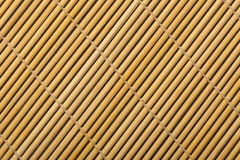 matt bambu Royaltyfri Fotografi