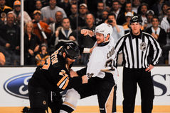 Matt Cooke, Pittsburgh Penguins royalty-vrije stock foto