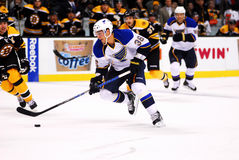 Matt D'Agostini St. Louis Blues Stock Photos