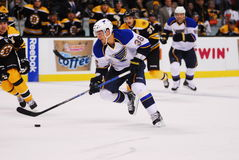 Matt D'Agostino St. Louis Blues Stock Photos