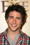 Matt Dallas Royalty Free Stock Image