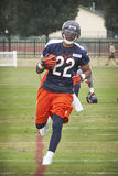 Matt Forte #22 Royalty Free Stock Photos