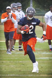 Matt Forte #22 Royalty Free Stock Images