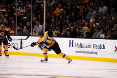Matt Hunwick Boston Bruins Royalty Free Stock Photo