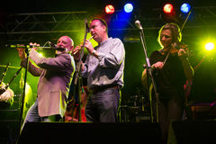 Matt Molloy med musikbandet för Clewfjärdrör (3) Fotografering för Bildbyråer