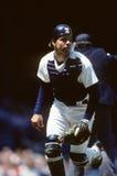 Matt Nokes. Detroit Tigers catcher Matt Nokes. (Image taken from color slide Royalty Free Stock Image