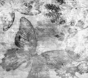 Matt Painted Grunge Wallpaper stazionario nero sbiadito Fotografia Stock Libera da Diritti
