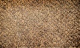 Matt textur för kokosnöt i brunt naturligt Arkivbild