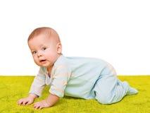 mattbarnet kryper grön soft Royaltyfri Foto