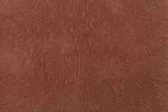 Matte brown fabric imitating animal fur. Leather background. Textured fabric. Matte brown fabric imitating animal fur. Leather background. Textured cloth stock photo