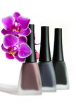 Matte varnishes. Royalty Free Stock Images