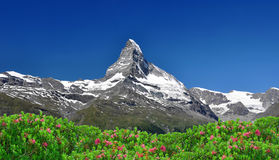 Matterhorn. Beautiful mountain Matterhorn - Swiss Alps Stock Images