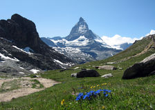 Matterhorn. And Meadows, Zermatt, Switzerland Stock Photo