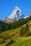 Matterhorn (4478m) in the Pennine Alps from Zermatt, Switzerland Royalty Free Stock Image