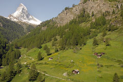 Matterhorn above fields near Zermatt Stock Image