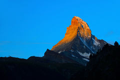Matterhorn in early morning with alpenglow and blue sky in summe Royalty Free Stock Photography