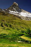 Matterhorn with greenery Royalty Free Stock Image
