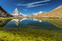 Matterhorn mountain behind a beautiful lake with grass. Mountain Matterhorn reflecting in the lake Royalty Free Stock Photography