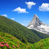 Matterhorn is a mountain in the Pennine Alps Stock Photo