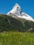 Matterhorn peak in sunny day from Zermatt, Switzerland. stock photography