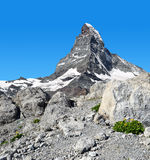 Matterhorn in Pennine Alps Royalty Free Stock Images
