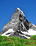 Matterhorn - Swiss Alps Royalty Free Stock Photos